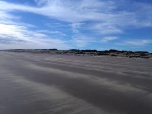 Hokio Beach