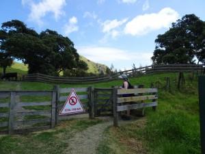 Wanderweg Eingang über die Kuhwiese