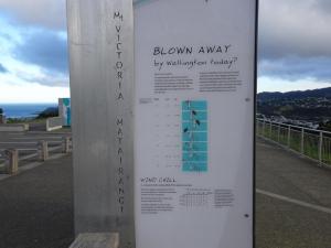 Wellington ist seeeeeehr windig!