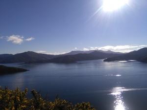 Blick auf die Marlborough Sounds