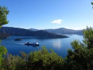 Fähre auf dem Weg nach Wellington