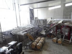 Links werden die Trauben in den Container geworfen und dort mittels einer Art Korkenzieherschraube von den Stielen entfernt
